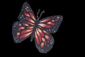 A painted butterfly from Angela Gonzalez's mural of her friend Miss Rhode Island USA Jonét Nichelle