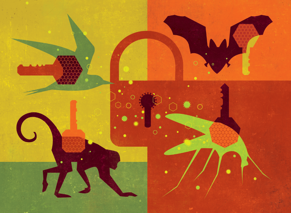 A graphic with stylized depictions of animals, a lock and key motifs
