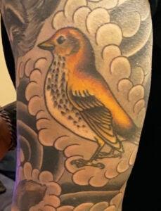 Detail of one of Ryan Kleinert's bird tattoos—a wood thrush on his arm.