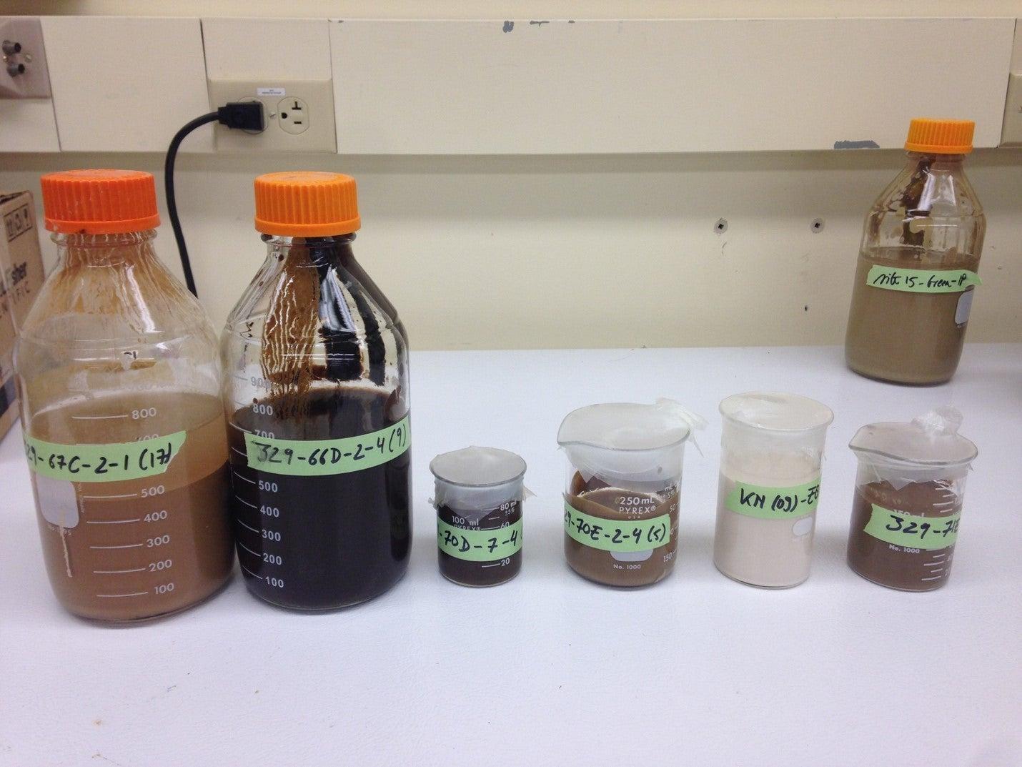 Marine sediment samples