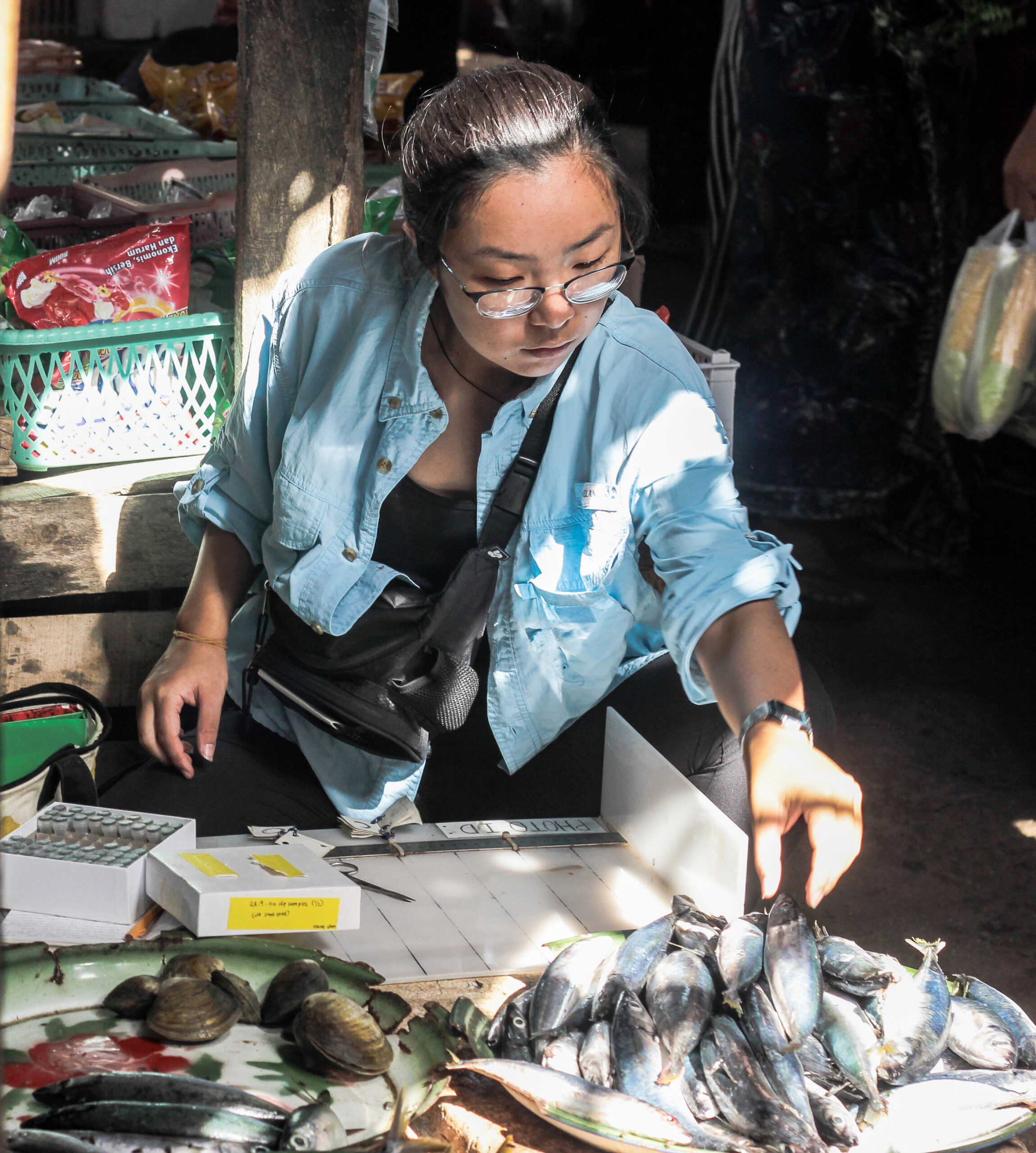 Elaine Shen collects samples of fish fins at an Indonesian market