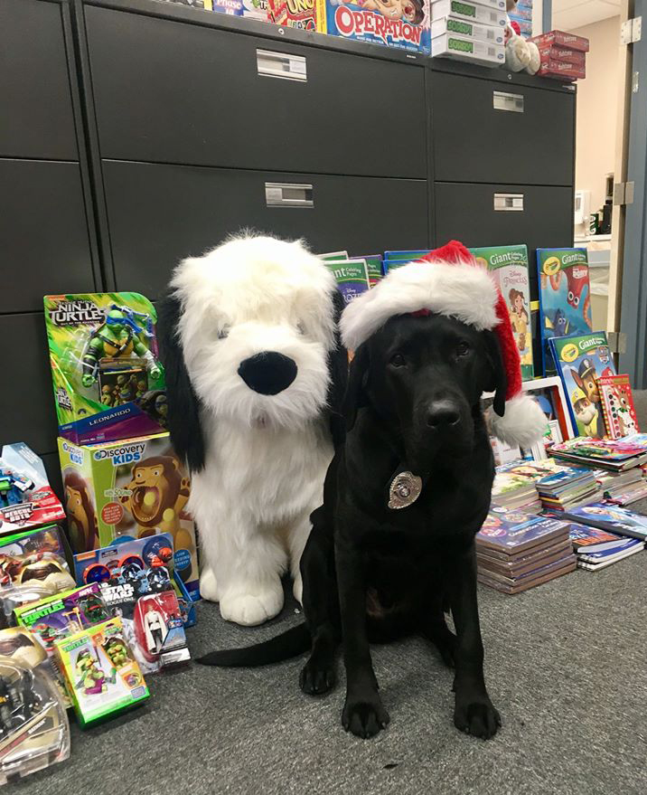 Police dog Figaro guards the toys