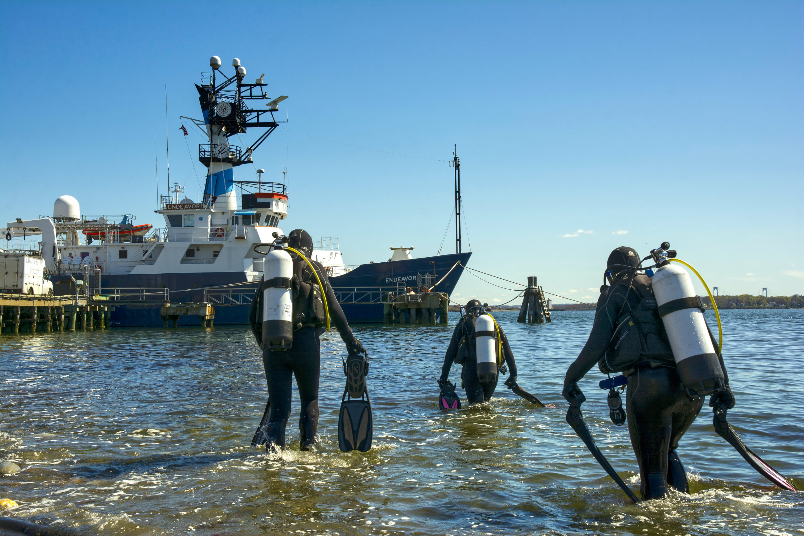 Researchers in scuba gear walk out into the ocean to begin a dive.