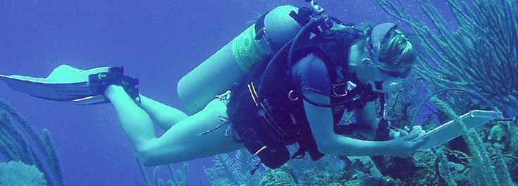 Female URI student scuba diving and taking survey of coral reef fish in the Caribbean Ocean