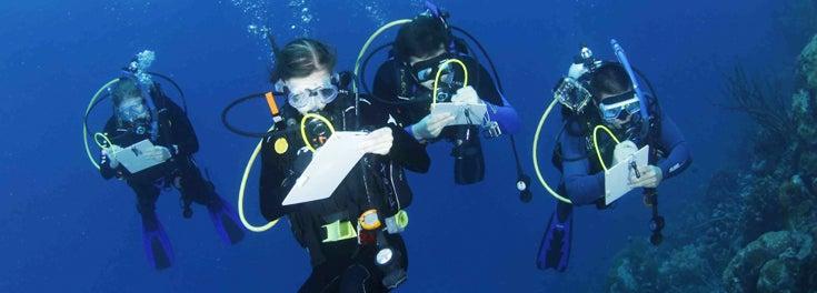 Scientific Diving