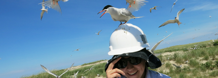 Coastal Fellow student with seagull landing on her head