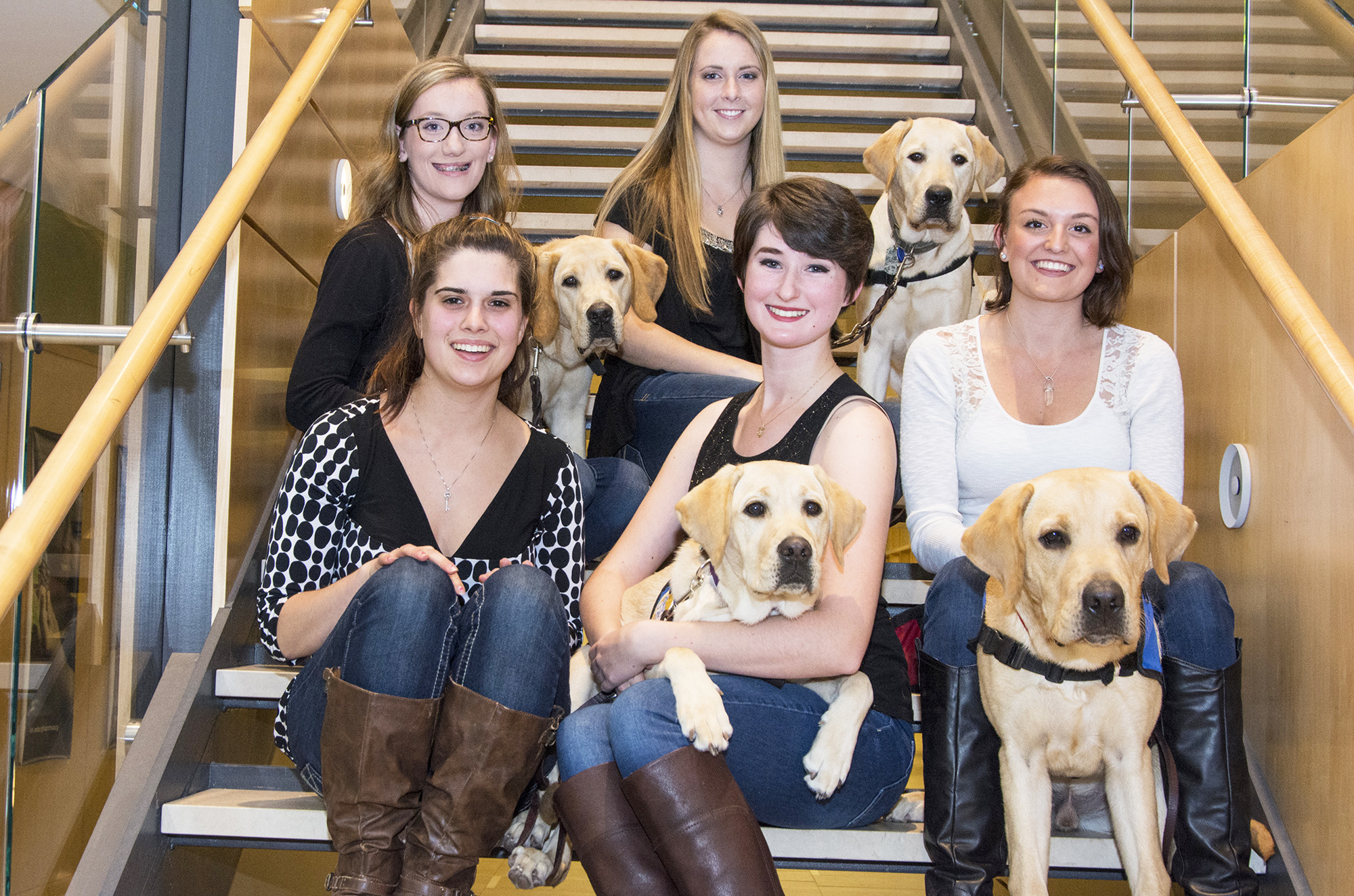 student puppy raisers club with four yellow labs