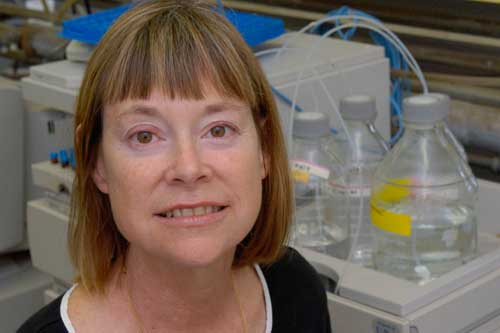 Professor Jimmie Oxley in her lab