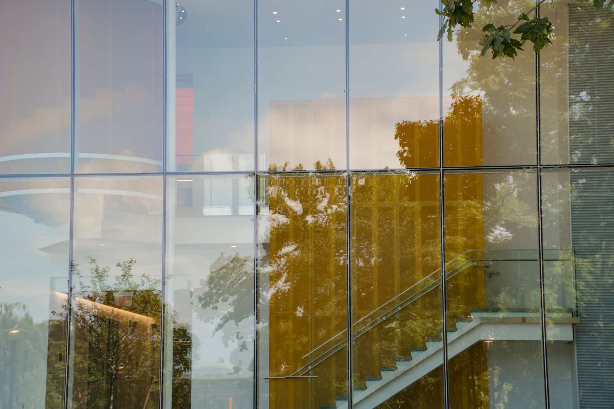 A view of the ground floor corridor with the surrounding landscape reflected in the glass.