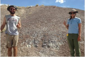 Students at the dig site
