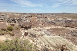 Vista of the Petrified Forest