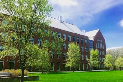 The pharmacy quad in the spring