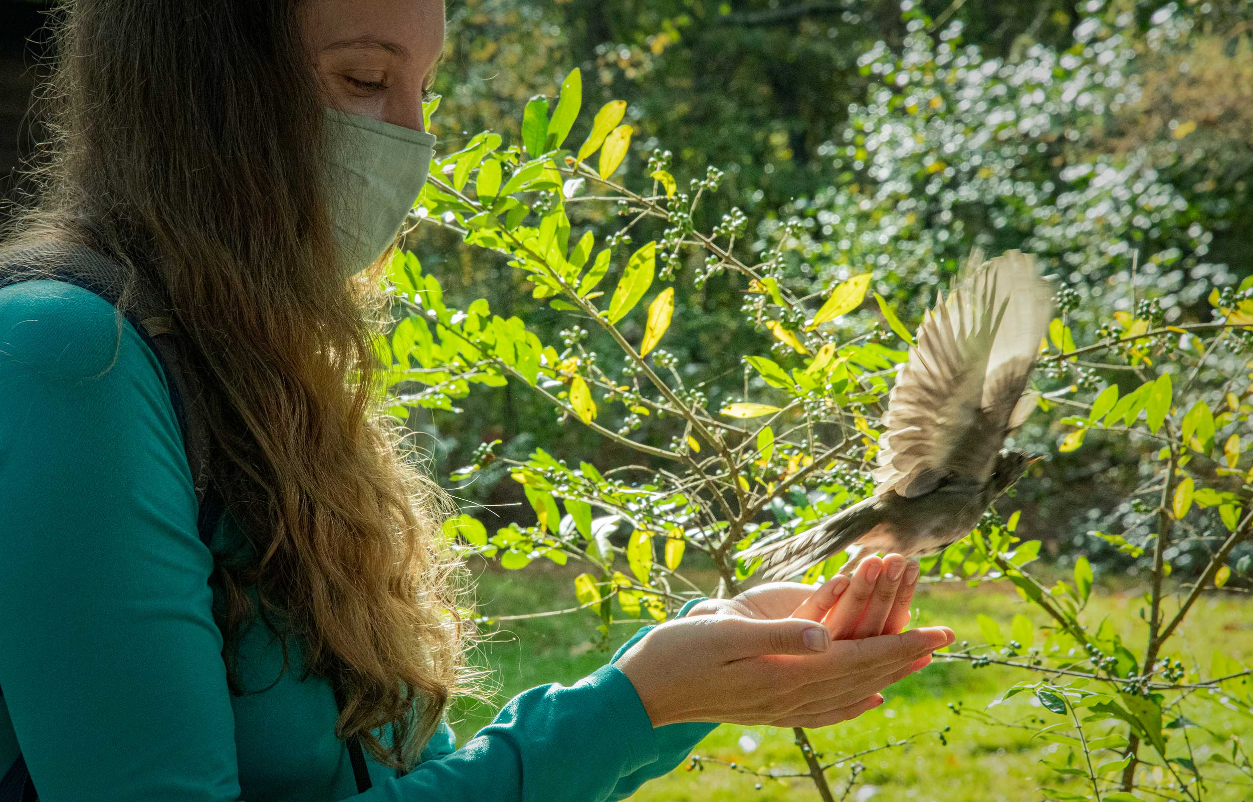 girl holding a bird watching in take flight